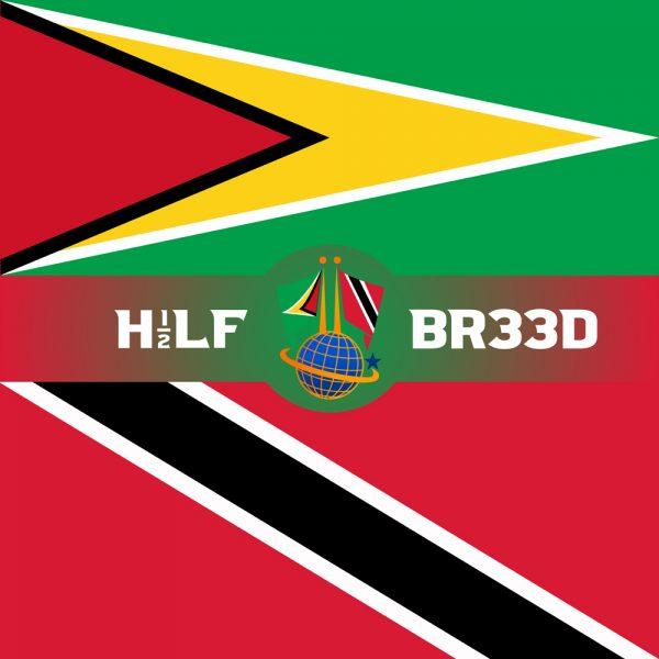 H1/2LF BR33D – GUYANA – TRINIDAD & TOBAGO FLAG