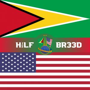 H1/2LF BR33D – GUYANA - USA FLAG
