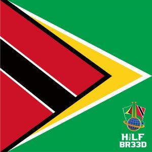 H1/2LF BR33D – TRINIDAD & TOBAGO INSIDE GUYANA FLAG